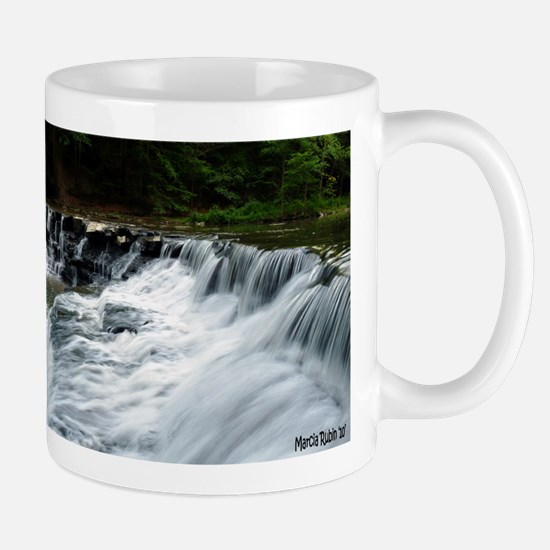 Falls on the Chagrin Mug