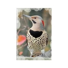 Common Flicker Rectangle Magnet