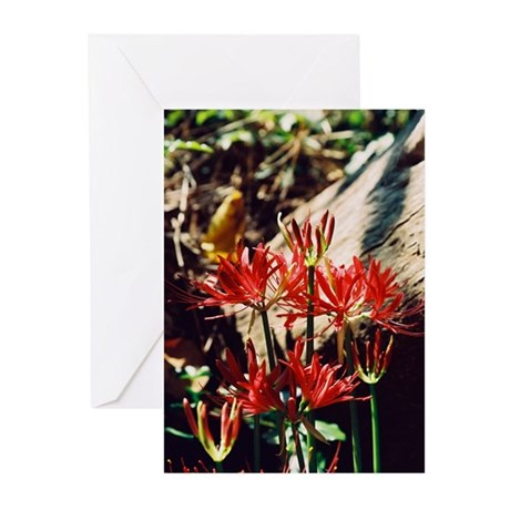 Spider Lily - Greeting Cards (Pk of 10)
