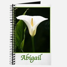 Abigail Journal