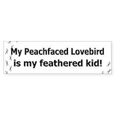 Peachfaced Lovebird Feathered Kid Bumper Bumper Bumper Sticker