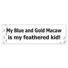 Blue and Gold Macaw Feathered Kid Bumper Bumper Bumper Sticker
