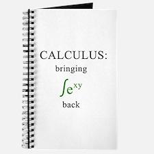 Calculus Journal