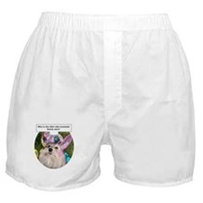 Who invented bunny ears? Boxer Shorts