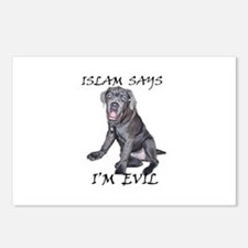 Islam Says I'm Evil Postcards (Package of 8)