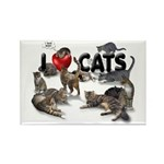 """Rectangle Magnet (100 pack) """"I Love Cats&quot"""