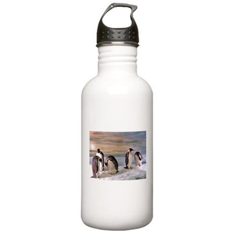 Penguins from Antarctica Stainless Water Bottle 1.