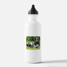 Cocker Spaniel 9W017D-067 Sports Water Bottle