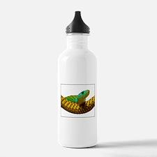 Green Mamba Snake Water Bottle