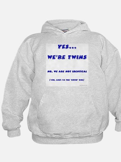 We're twins - fraternal Hoody