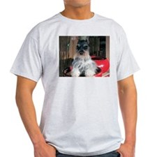 Watch My Schnauzer Grow Ash Grey T-Shirt