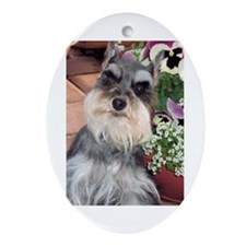 Schnauzer and the Pansies Oval Ornament