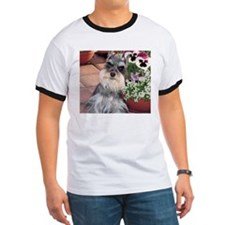 Schnauzer and the Pansies T