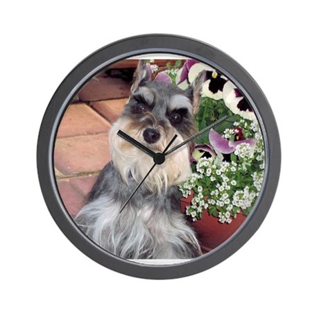 Schnauzer And The Pansies Wall Clock By Sweetzsazsaamor