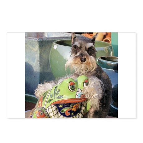 Schnauzer and the Toad Postcards (Package of 8)