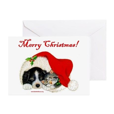 Christmas Puppy & Kitten Greeting Cards (Pk of 10)