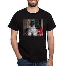 Watch My Schnauzer Grow Black T-Shirt