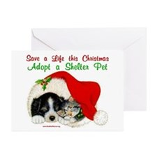 Christmas Puppy & Kitten Greeting Cards (Pk of 20)
