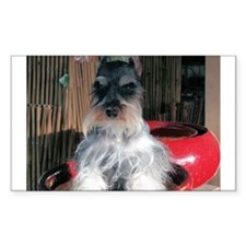 Watch My Schnauzer Grow Rectangle Decal