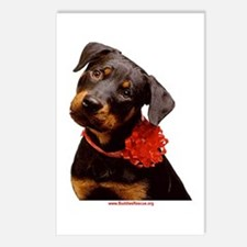 Take Me Home for Christmas Postcards (Package of 8