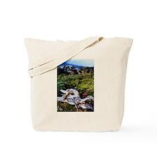 Bristlecone Pines- Tote Bag