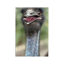 Emu Rectangle Magnet