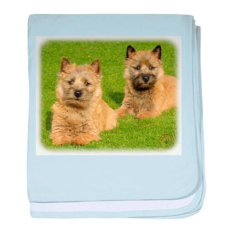 Cairn Terrier puppies 9W048D- baby blanket