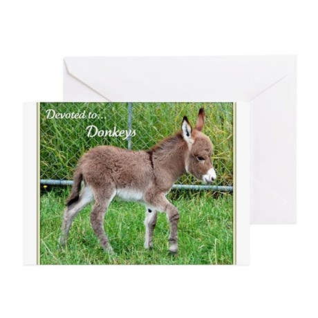 Greeting Cards (Pk of 10) - Devoted to Donkeys