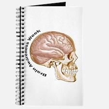 Cute Brain surgery awareness Journal