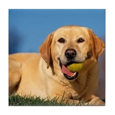 YELLOW LAB Tile Coaster