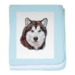 Malamute Adult baby blanket