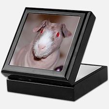 Keepsake Box-Skinny Pig