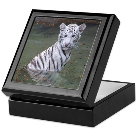 Keepsake Box-Tiger