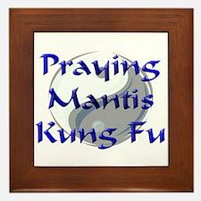 Praying Mantis Kung Fu Framed Tile