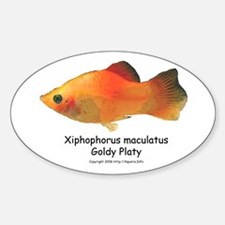Gold Platy Oval Decal