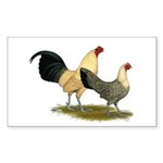 OE Bantams Cream Buttercup Sticker (Rectangle 50 p
