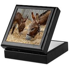 Donkey and Foal Keepsake Box