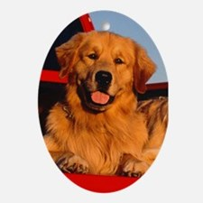 GOLDEN RETRIEVER PICKUP Ornament (Oval)