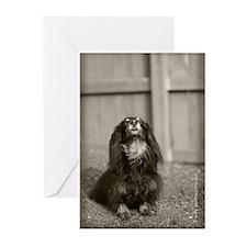 Hallie Dachshund Designs Pens Greeting Cards (Pk o
