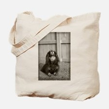 Hallie Dachshund Designs Pens Tote Bag