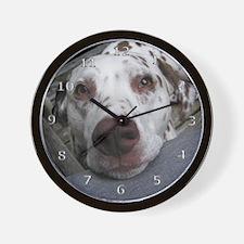 Liver Dalmatian Wall Clock