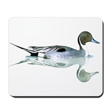 Pintail Drake Mousepad
