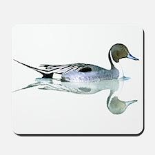 Pintail Drake Mousepad