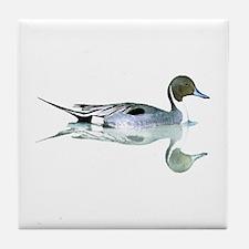 Pintail Drake Reflection Tile Coaster
