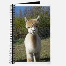 Ain't She Cute! Journal