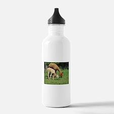 Momma & Me Water Bottle
