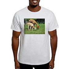 Momma & Me T-Shirt