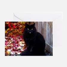 KITTY WITH AN ATTITUDE Greeting Cards (Pk of 20)