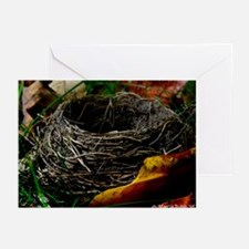 FALLEN Greeting Cards (Pk of 20)