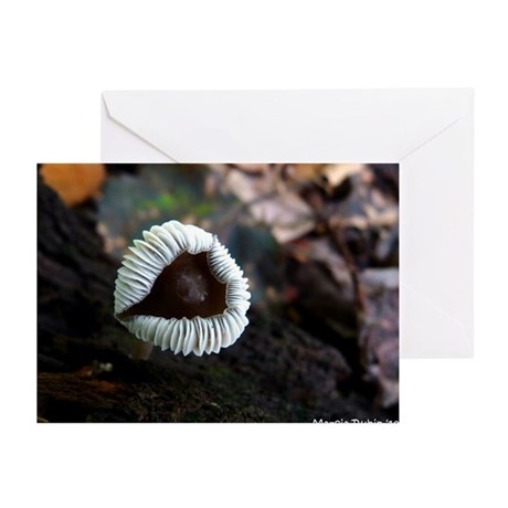 FLIPPED OUT Greeting Cards (Pk of 20)